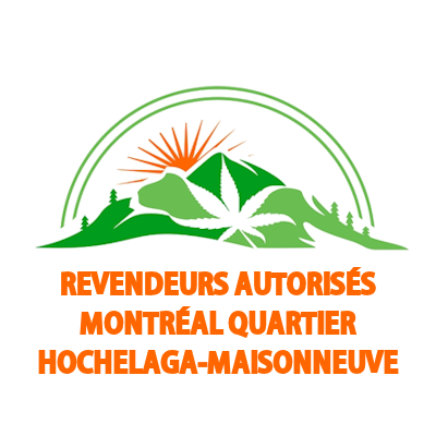 Livraison de cannabis à Hochelaga-Maisonneuve